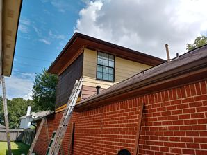Before Photo - Lexington Exterior Painting with Siding Replacement (4)